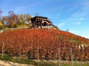 The Viniční altán winery in Groebe Park Photo GK